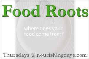 food-rootsb1