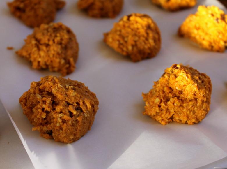 Kefir-Fermented Oat-Pumpkin Cookies (gluten-free, dairy-free, egg-free, sugar-free)