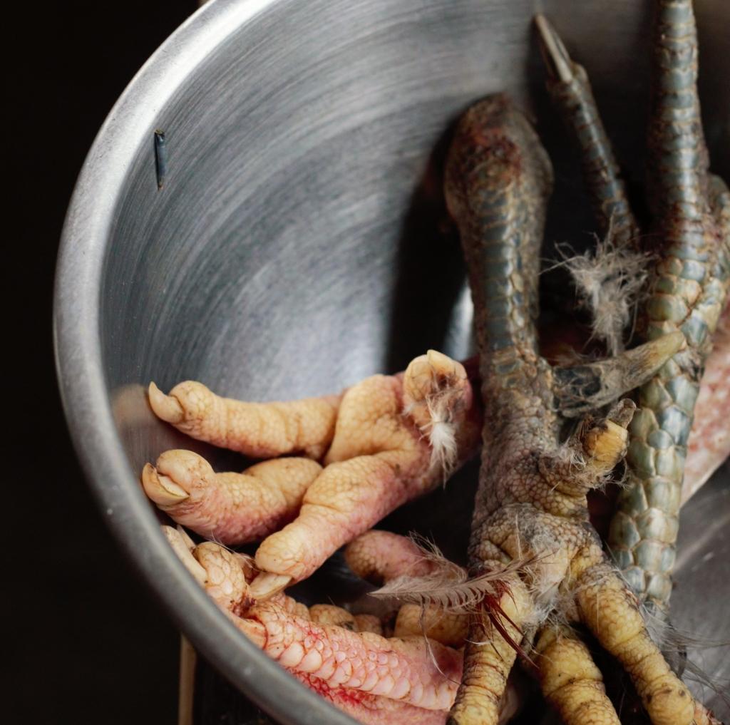 Preparing Chicken Feet for Nutrient-Rich Broth